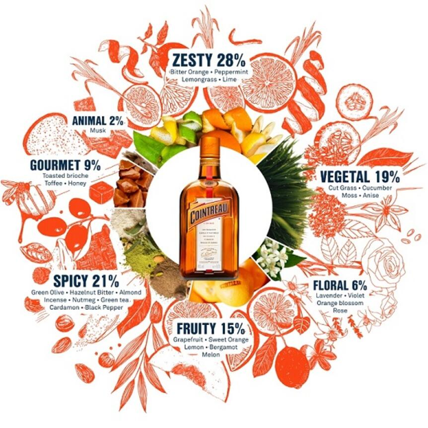 Discover the extraordinary Cointreau aroma wheel